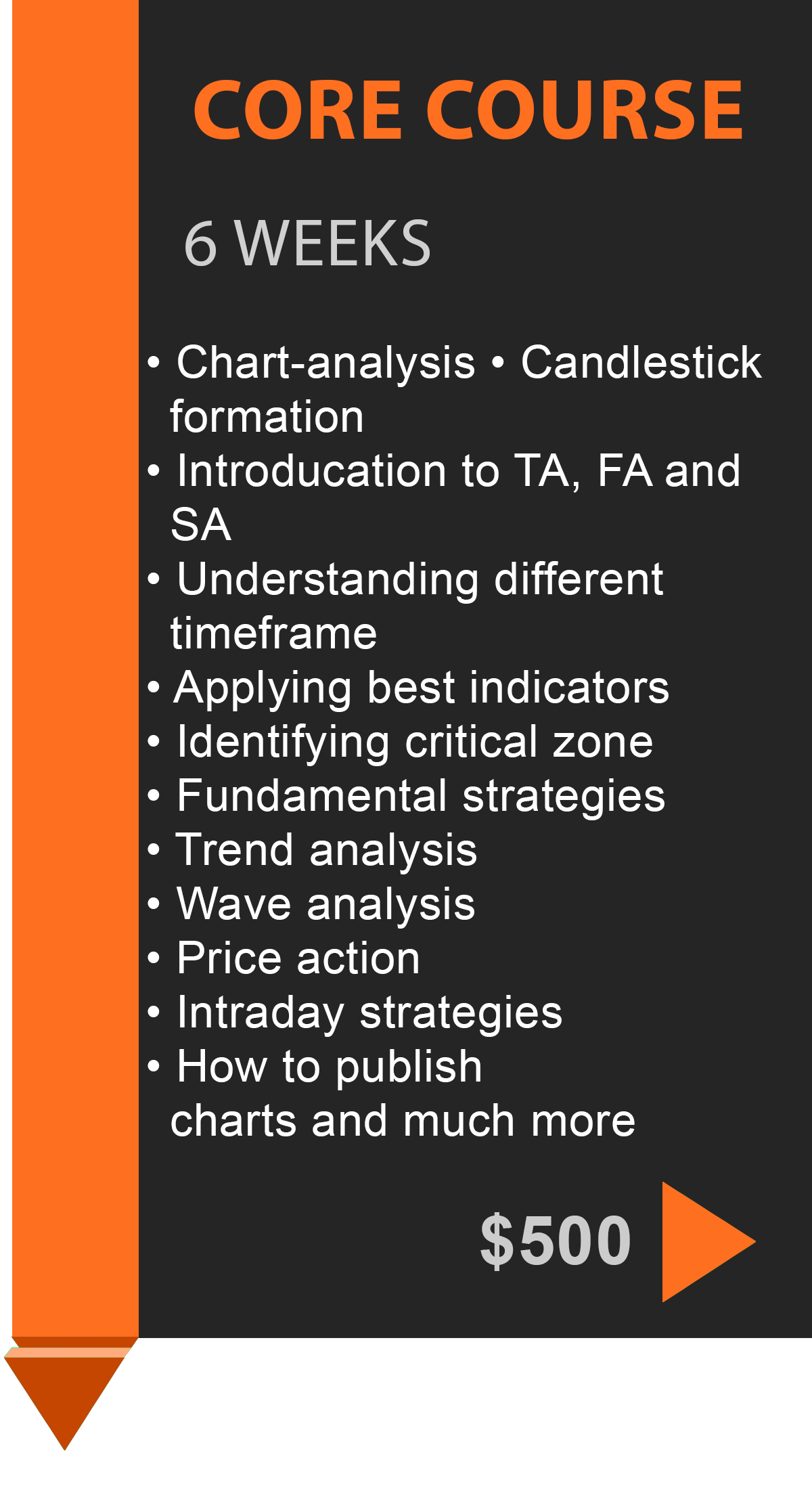 Forex Courses
